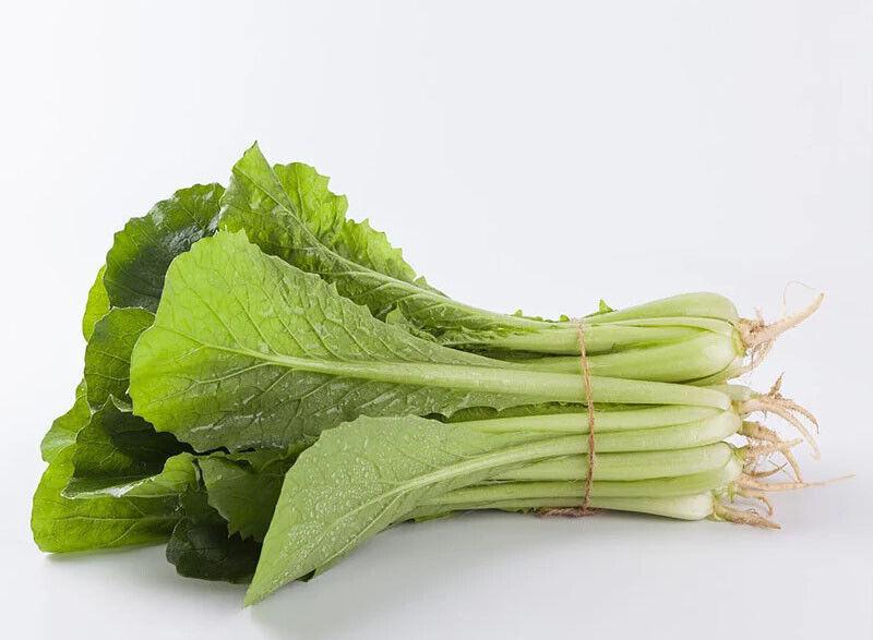 200+Pak Choi Seeds Green Stem Chinese Cabbage Bok choy Four Season vegetable USA