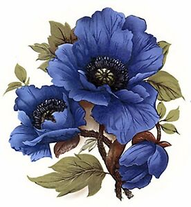 Blue-Poppy-Flower-Select-A-Size-Waterslide-Ceramic-Decals-Bx