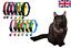 REFLECTANTE Gato Gatito Collares Con Campana