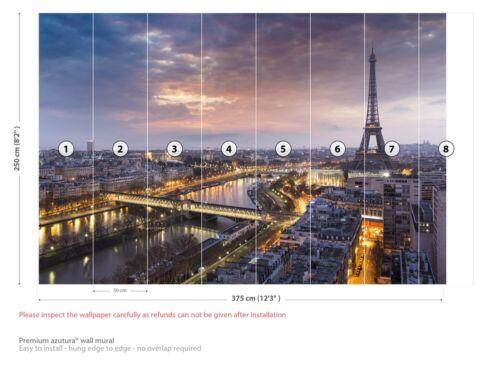 Eiffel Tower At Sunset Paris Wall Mural Wallpaper WS-42555