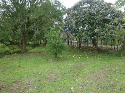 Rancho en VENTA en Romulo calzada, Chiapas, cerca de Malpasito