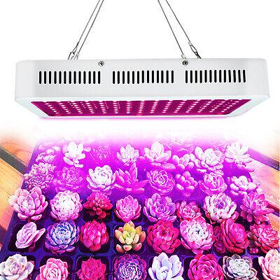 1000w Hps Äquivalent Led Grow Lampe Vollspektrum Für Pflanzen Lampe Wachstum Moderater Preis