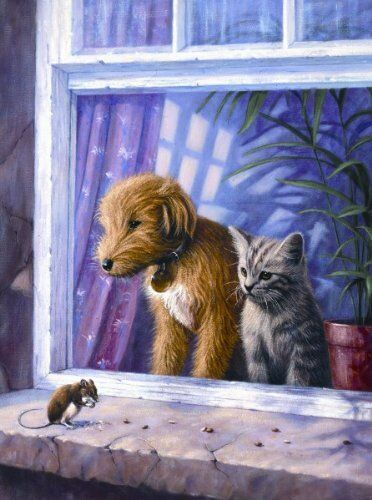24 Sets Zur Auswahl Hund Katze Welpe /& Tier Gemälde A4 Malen nach Nummer Sete