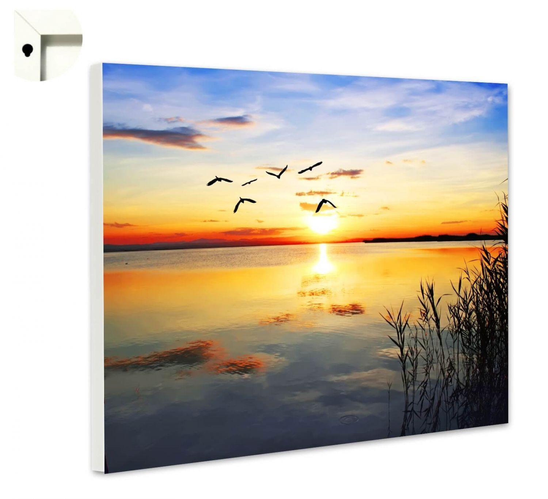 Magnettafel Pinnwand mit Motiv Blaumen Natur Sonnenuntergang