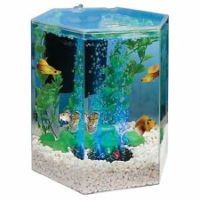 Desktop Aquarium Tank Beta Fish Kit 1 Gallon Home Office Hallway