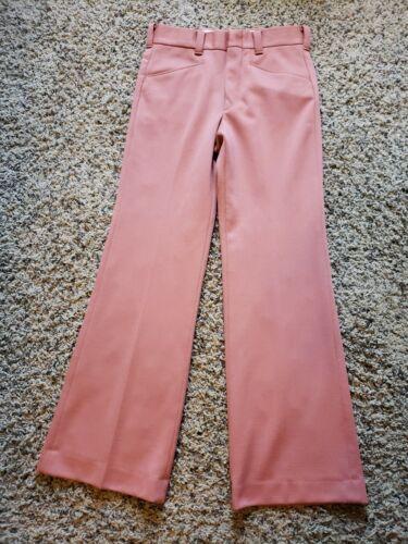 Vintage 1970's levis panatela Pants  30x30 DOUBLE