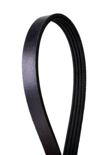 Serpentine Belt Continental Elite 4040430 Automotive Belts ...