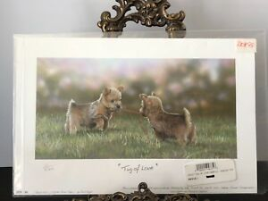 """Details about NWT """"TUG OF LOVE"""" NORFOLK TERRIOR PUPS SIGNED PAUL DOYLE  ENGLAND 55/500"""