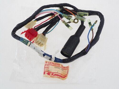 Great Dane Genuine part D28116 AUBURN/WIRE HARNESS WIRING (MAIN) JR D28116  for sale online | eBay