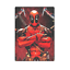 Deadpool Comfortable Soft Unique Throw Blanket For Bed Sofa
