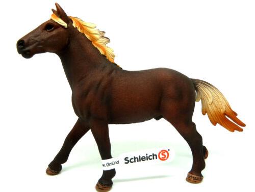 1-5-4) Schleich (13805) Mustang semental caballo caballos schleichpferde Wild caballo