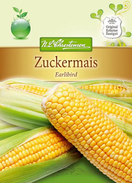 Zuckermais 'Earlibird' F1 - Zea mays, Mais Samen, 4334