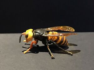 Epoch Kaiyodo Life Cycle Stage 1 Asian Giant Wasp Pupa Larva Grub Insect Figure
