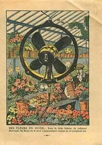 Horticulture-Pepiniere-floriculture-Horticulteur-Fleurs-Serre-1932-ILLUSTRATION