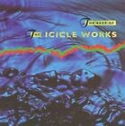 Beggars Banquet - Best Of The Icicle Works