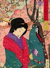 Cultural Japón Abstracto Geisha Vestido chikanobu cartel impresión de arte imagen bb684a