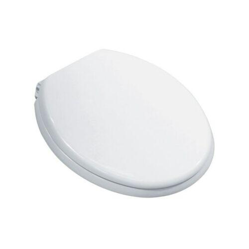 Modern White Toilet Seat Soft Close Hinges Polypropylene Easy Install Bathroom