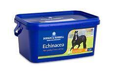 Accurato Dodson & Horrell Di Echinacea Equini Cavallo Di Prodotti A Base Di Erbe-