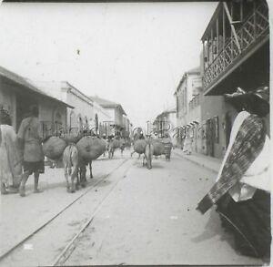 Africa Gambia Chemin Da Ferro Foto Q33 Placca Lente Stereo Positive Vintage 1920