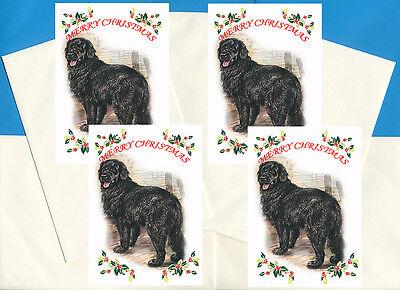 Newfoundland Old Dog Food Advert On
