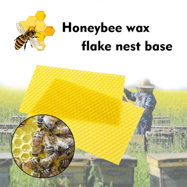 "30X Honeycomb Bee Wax Foundation Beehive Honey Frames Base Sheets 7.7*16.3/"" NEW"