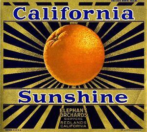Redlands California Sunshine Orange Citrus Fruit Crate Label Art Print