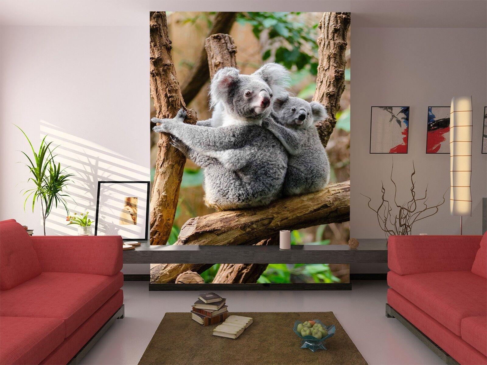 3D Animal Koala 810 Wallpaper Mural Wall Print Wall Wallpaper Murals US Lemon