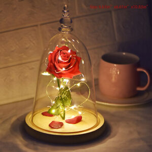 Beauty-And-The-Beast-Light-up-Enchanted-Rose-Glass-Dome-Birthday-Gifts-For-Mom