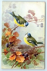 POSTCARD-artist-signed-Catherine-Klein-two-birds-with-nest-blue-tits