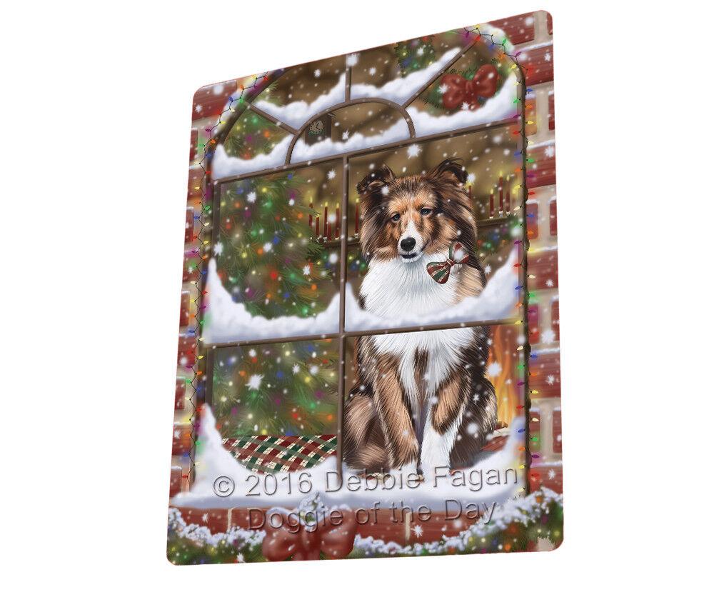 Please Come Home For Christmas Shetland Dog Sitting In Window Blanket BLNKT54246