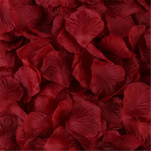 FLOWER ROSE PETALS WEDDING PARTY TABLE DECORATION FLORAL CONFETTI DECOR