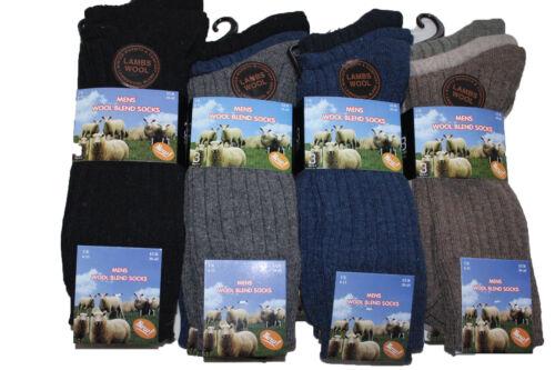 6 pairs mens Lambswool blend socks
