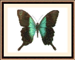 Butterfly-8512-Cross-Stitch-Kit