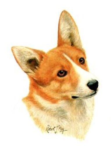 CORGI Dog Heads in Twelve Identical 6 inch Fabric Squares to Quilt or Sew
