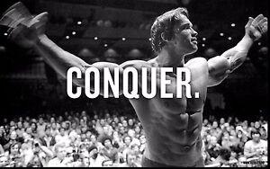 Arnold SSchwarzenegger Conquer Bodybuilding Print Poster Canvas in 5 Pieces