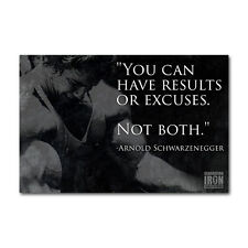 Rules of success arnold schwarzenegger Silk Poster//Wallpaper 24 X 13 inches