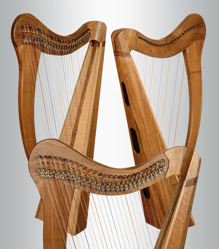 disponibile NUOVA NUOVA NUOVA 22-e 27-corde-Ari-arpe celtiche arpa irlandese  prezzi eccellenti