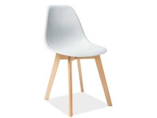 Esszimmerstuhl Küchenstuhl Stuhl Buche Kunststoff pflegeleicht modern Farbenwahl