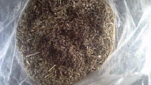 Canadian-Two-Ounces-Catnip-Cats-Fun-Loose-catnip-super-strong-56g