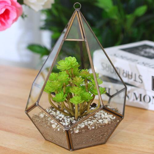 Wall Mount Glass Geometric Terrarium Windowsill Tabletop Succulent Plant Vase