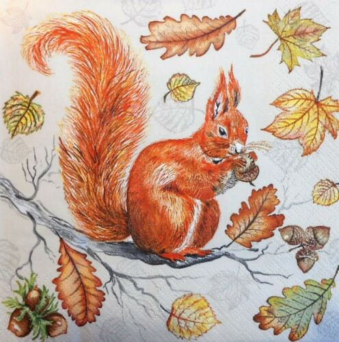 4 x Single Paper Napkins Squirrel Leaves Decoupage and Crafting Table 61