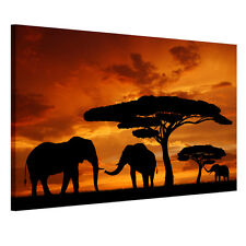 Framed READY TO HANG HD Canvas Prints Wall Art Painting Picture Sunset Elephant