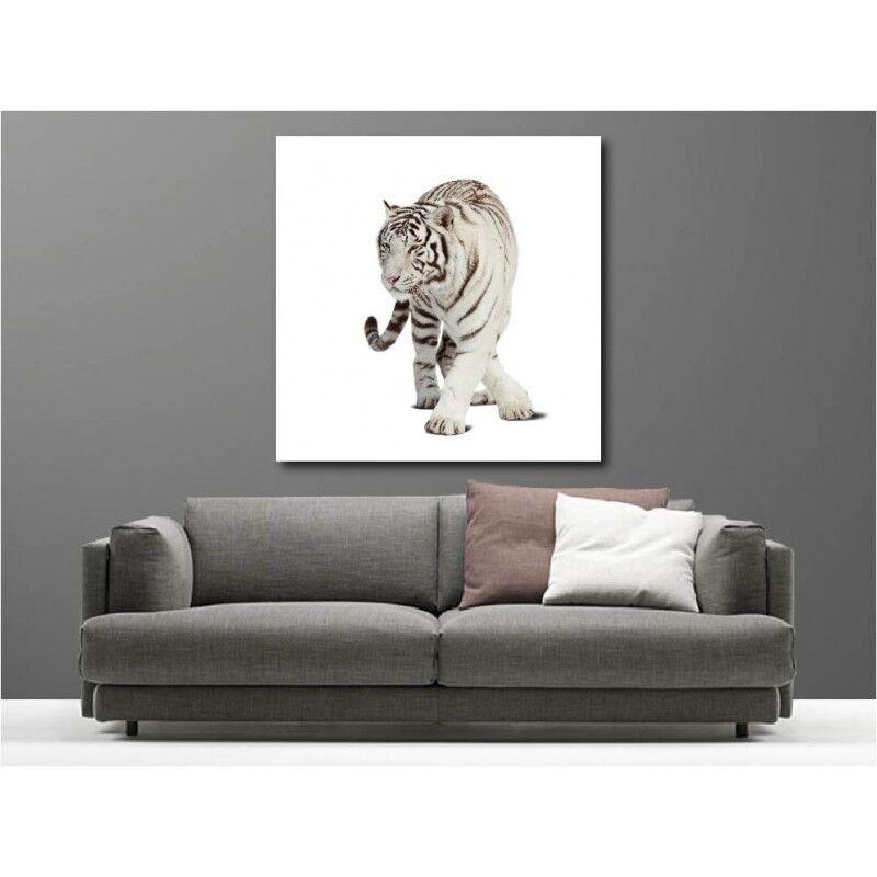 Gemälde Stoff Quadratisch Tiger white 98142872