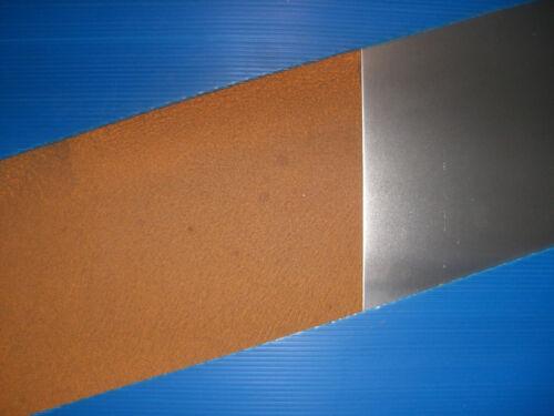 Beeteinfassung Cortenstahl Rasenkante BUCHERT 2000x100x2 mm /> CORTEN STAHL