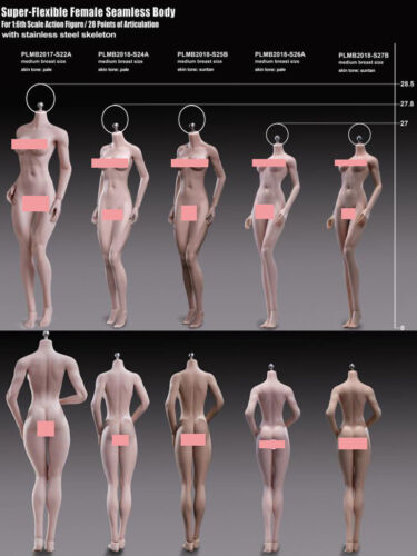 In-Stock 1//6 Phicen TBLeague Short Asian Female Body S24A For Hot toys 12in Body