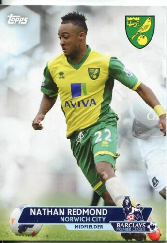 Premier Gold Soccer 13//14 Base Card #163 Nathan Redmond