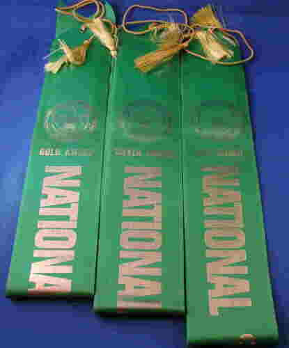 Official BSA National Camping Award Ribbons 3 Different