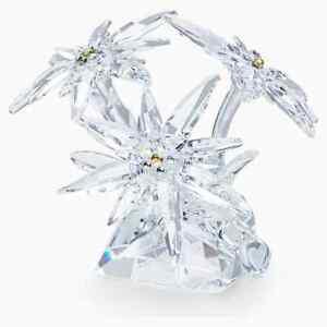 Swarovski-Crystal-Creation-5493708-SCS-Edelweiss-RRP-349