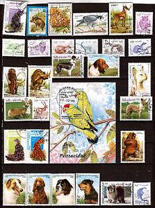 CORREOS-AFGANO-Animales-salvajes-nacionales-prehistoricos-diversos-C176