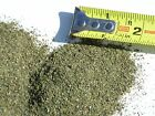 Catnip Very Fine Cut (3g thru 1 LB) Green Dried Fresh Cat toys Potent  MS